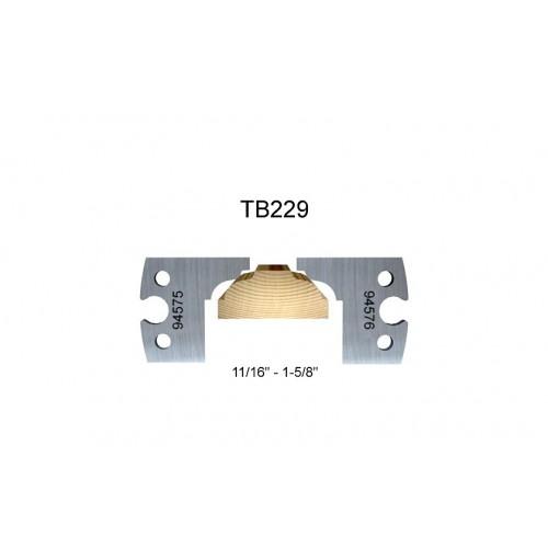 TB229
